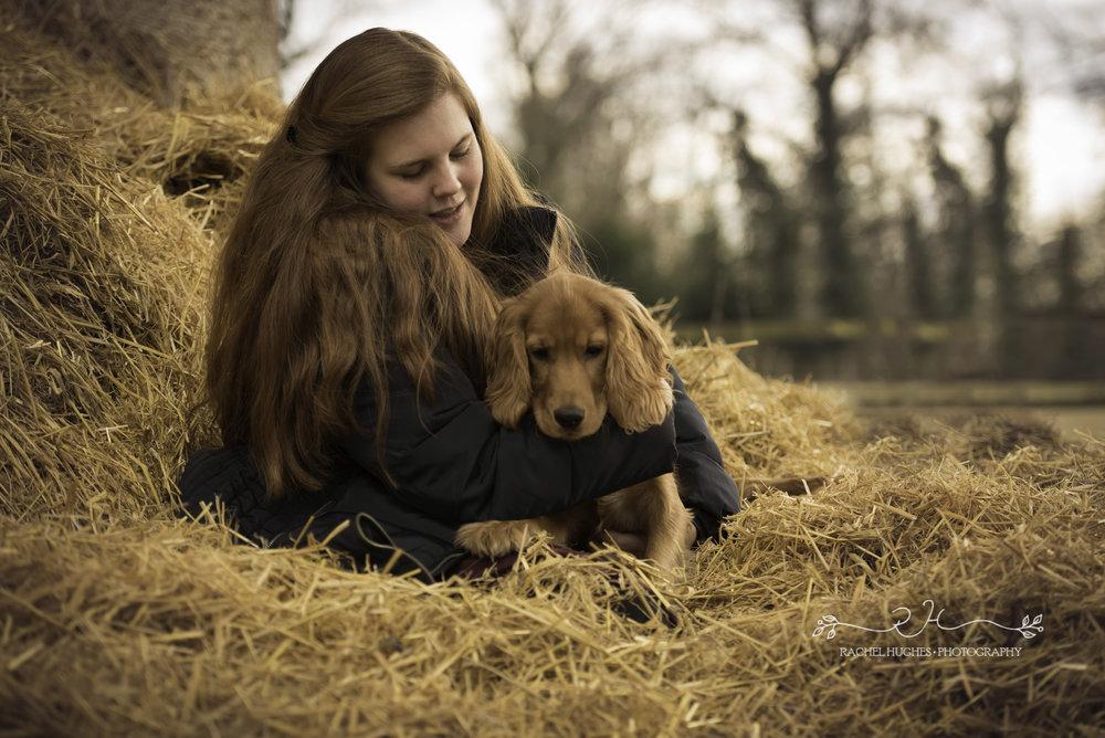 Outdoor pet photoshoot of golden spaniel puppy cuddling owner in haystack.jpg