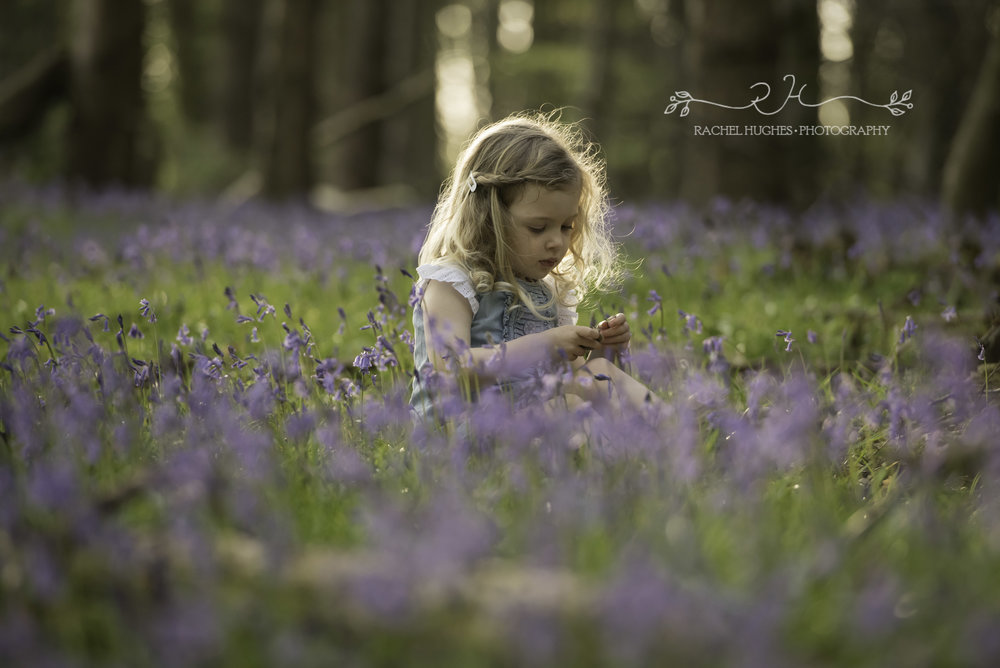 Henley family photoshoot - girl in bluebells.jpg