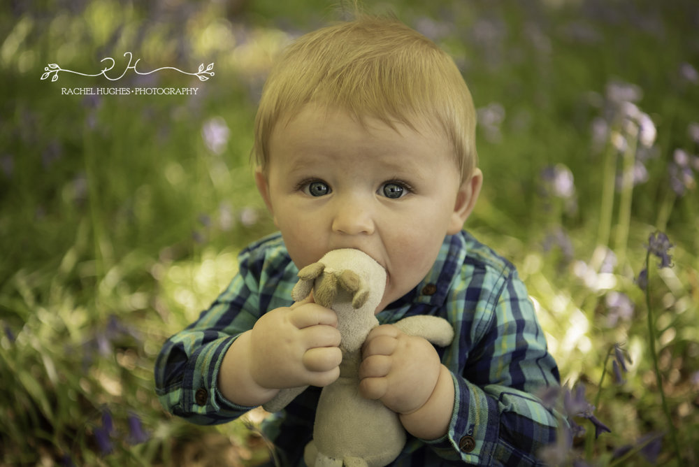 Family bluebell photoshoot in Henley-on-Thames