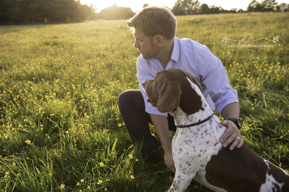 Jersey photographer - English pointer dog at sunset