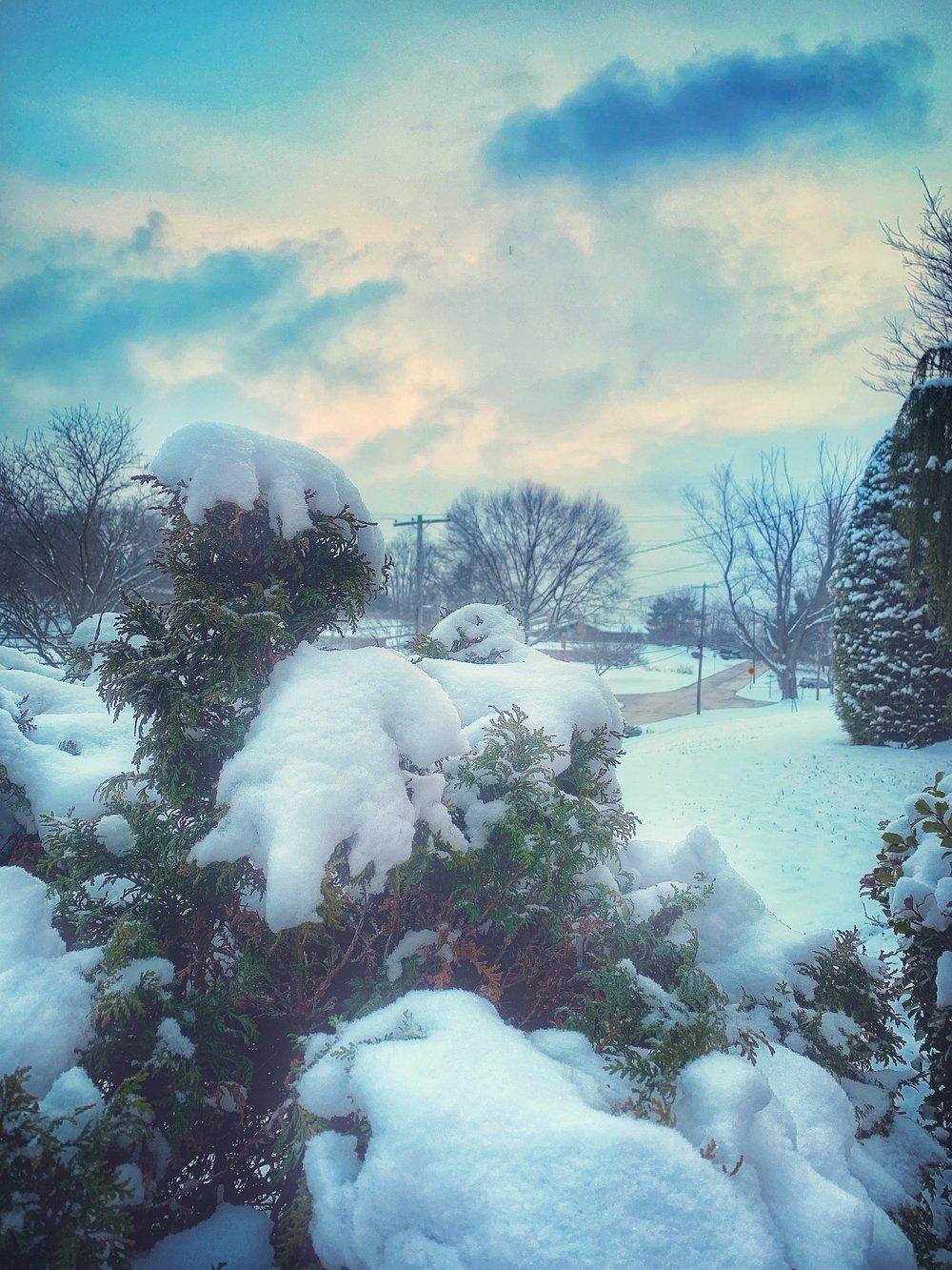 snow front.jpeg