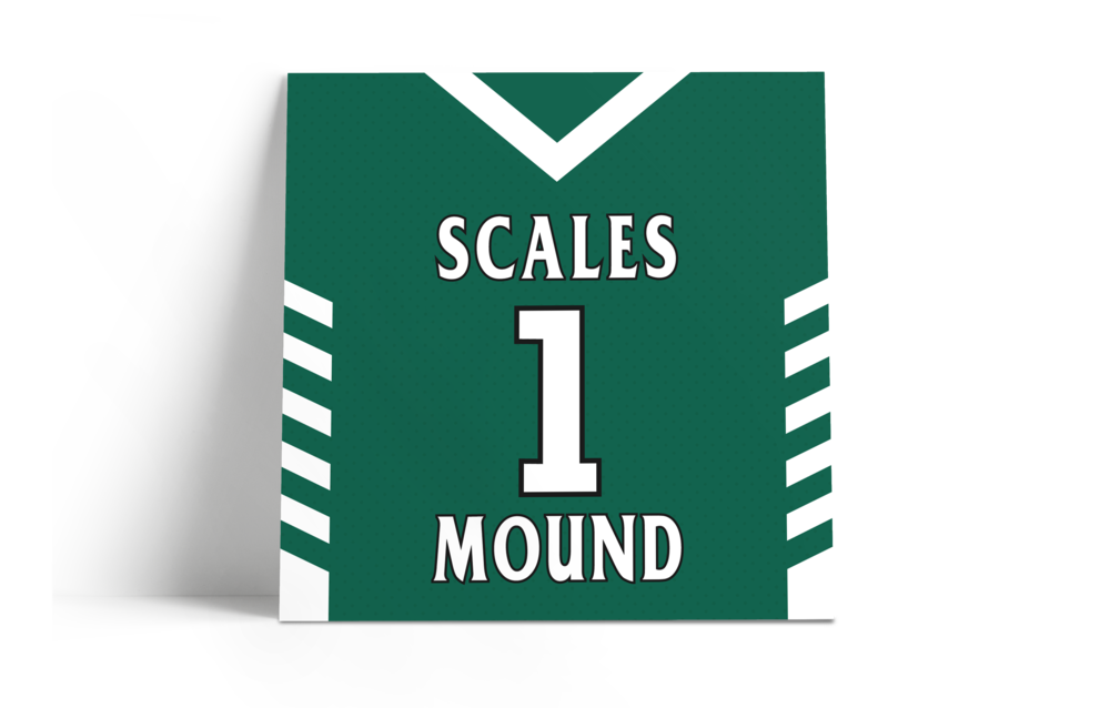 """""""They turned out phenomenal. Replica did a tremendous job getting the product ready and completed in a very timely fashion, too"""" - Erik Kudronowicz, head basketball coach - scales mound hs (IL)"""