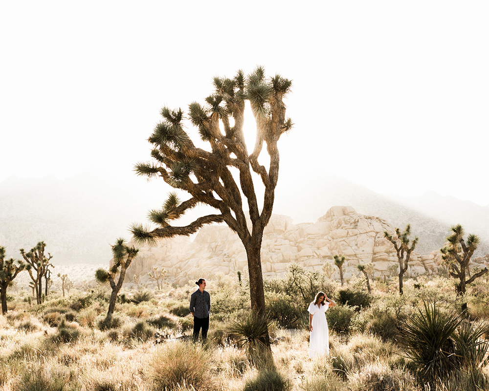 Jen & Alex - JOSHUA TREE NATIONAL PARK