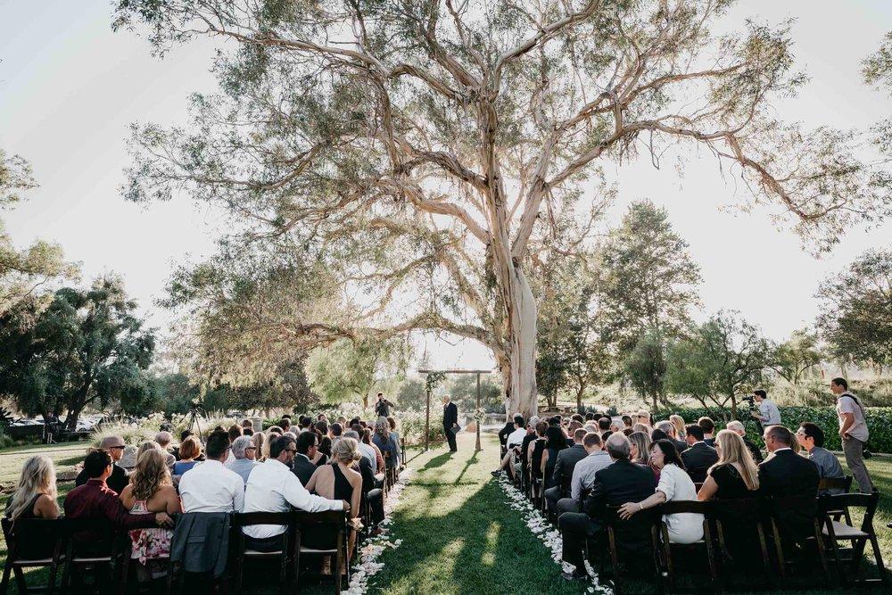 JesseandTodd_Ceremony24.jpeg