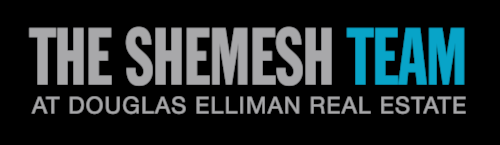shemesh team logo