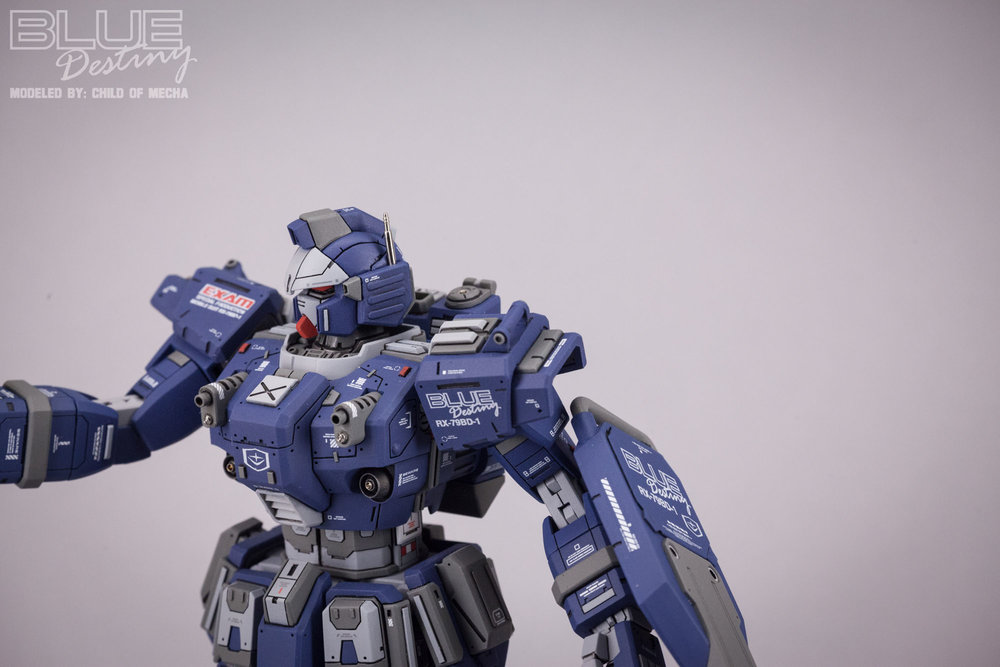Blue Destiny Refurbished (44).jpg