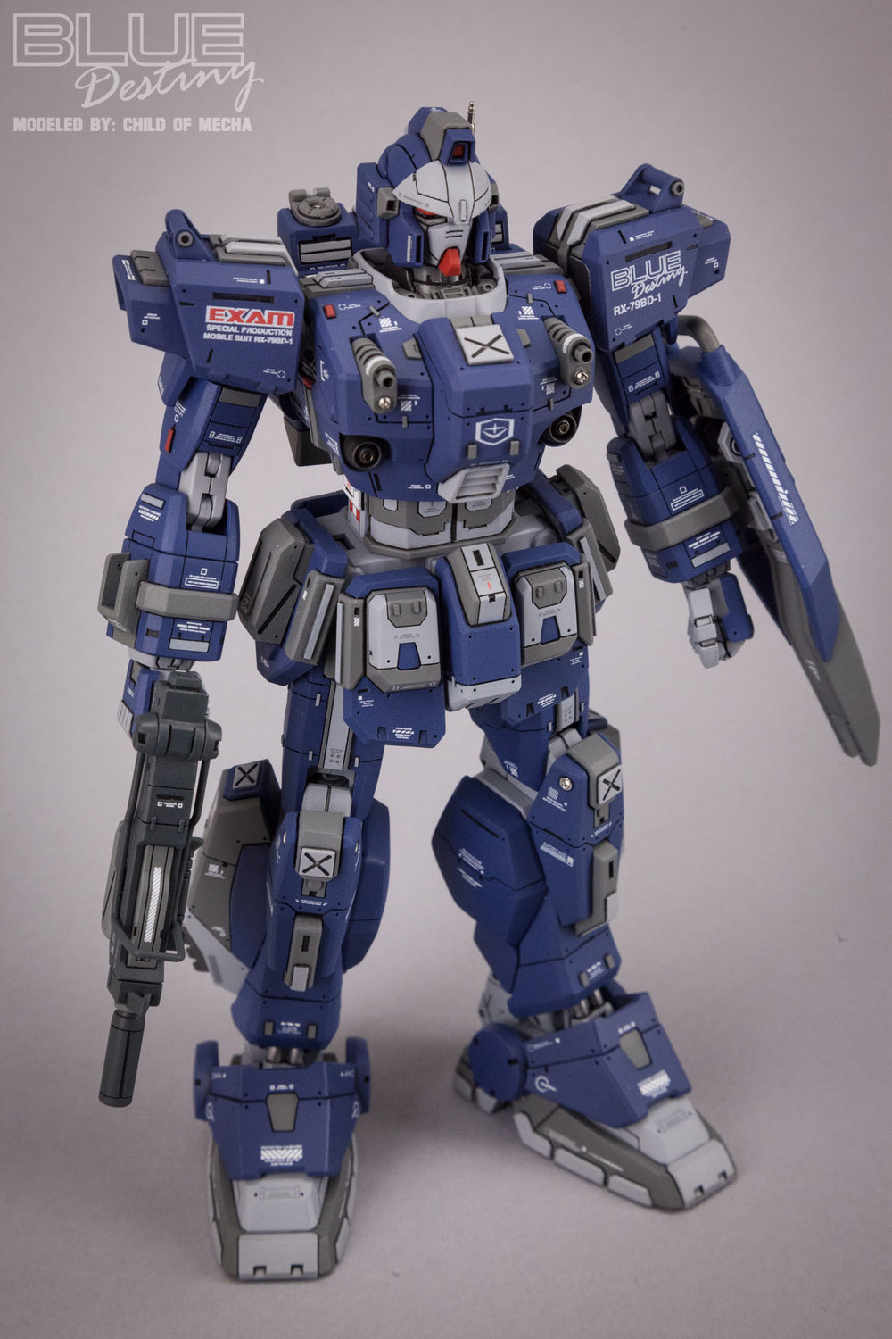Blue Destiny Refurbished (65).jpg