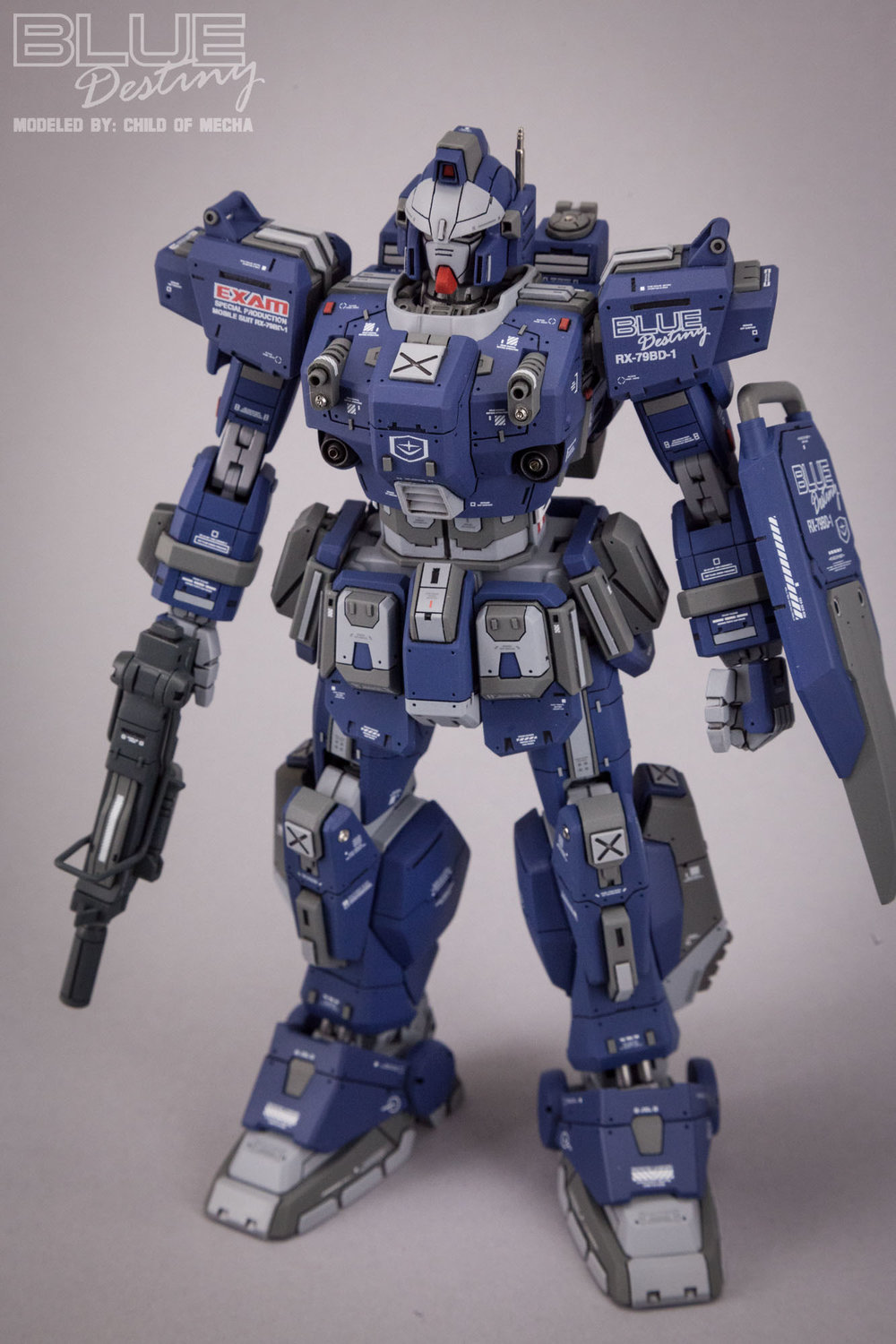 Blue Destiny Refurbished (66).jpg