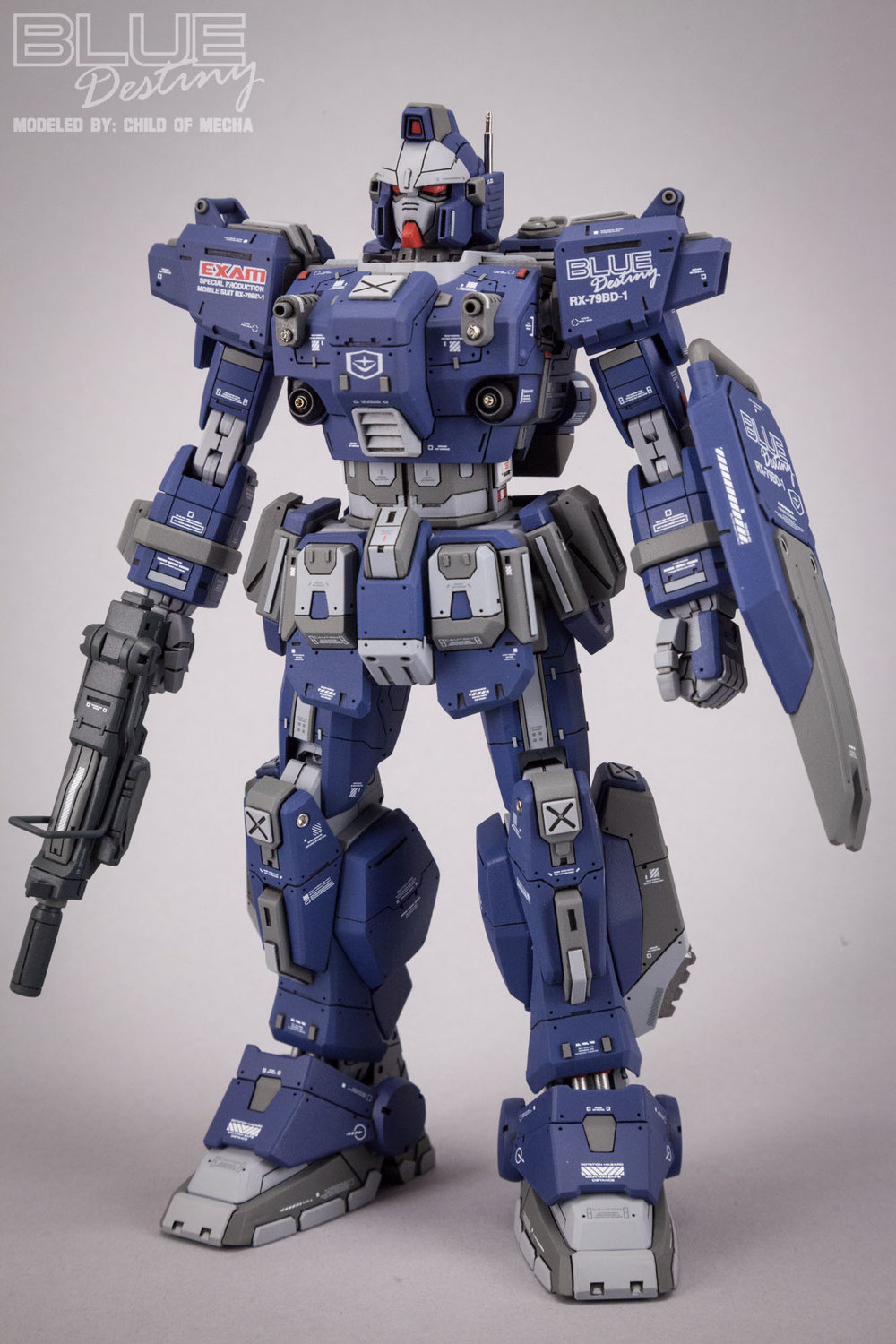 Blue Destiny Refurbished (73).jpg