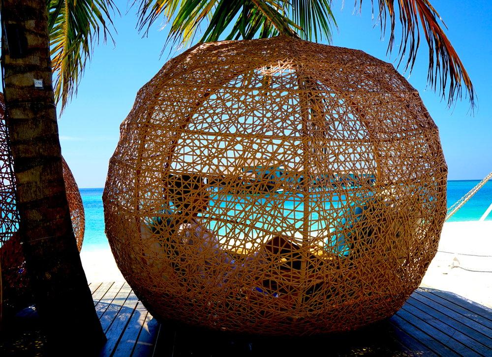 maldivessush2.jpg