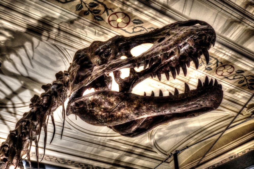 londondinosaur.jpg