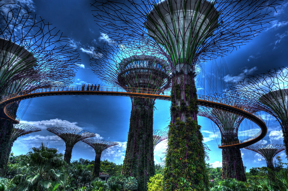 singapore gardens bq.jpg