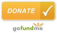 gofundme-button.jpg