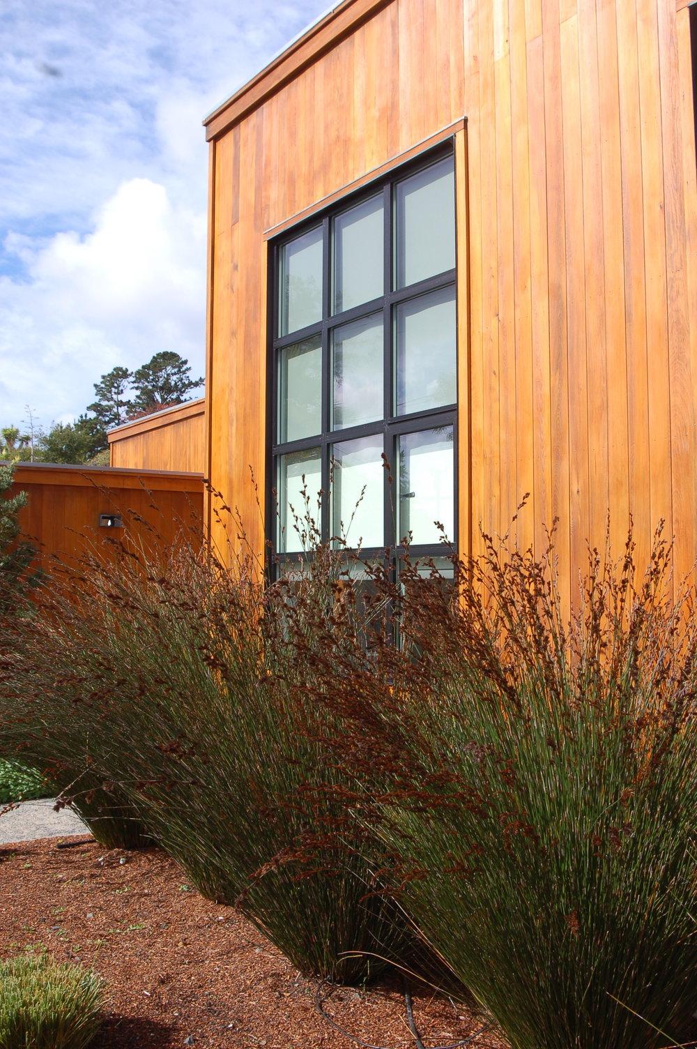 Modern Private Garden  Tiburon, California