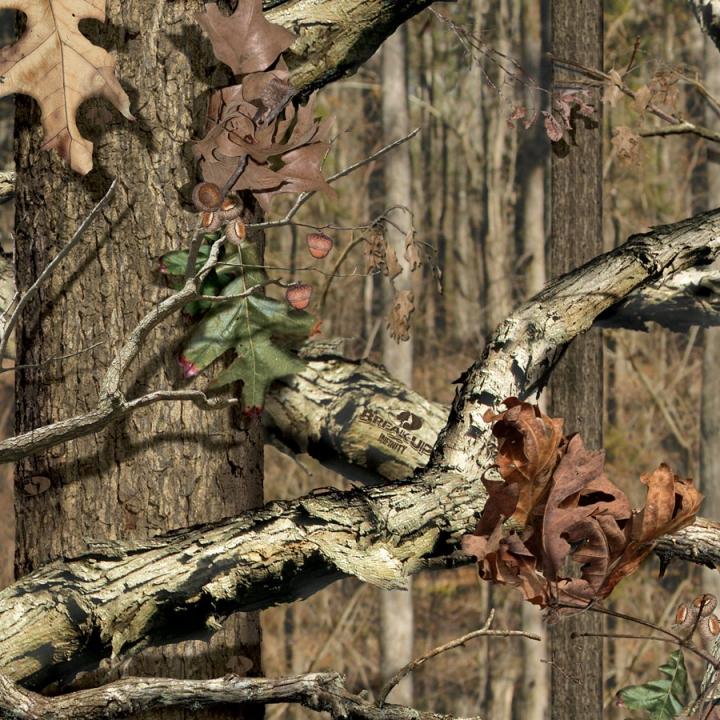 Mossy Oak - Breakup Infinity