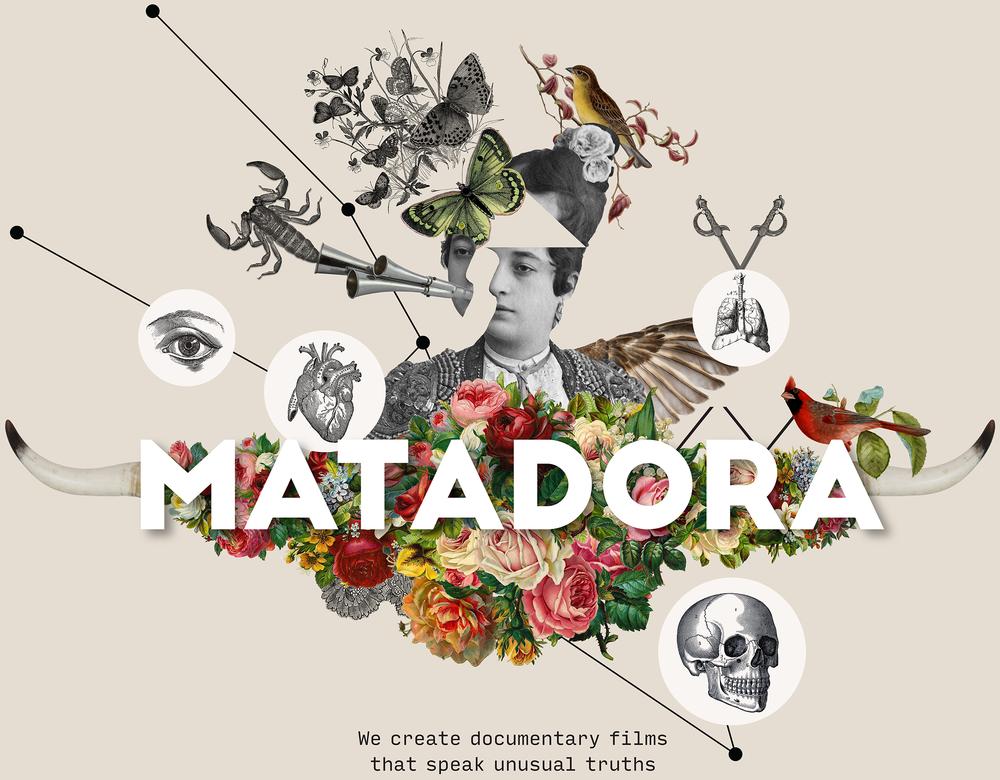 Matadora_logo_cream_background_RGB_large_NEW.png
