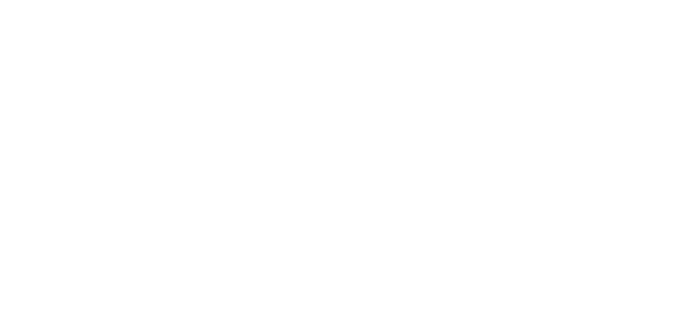 Anne Curry Homes Logo-2 White.png