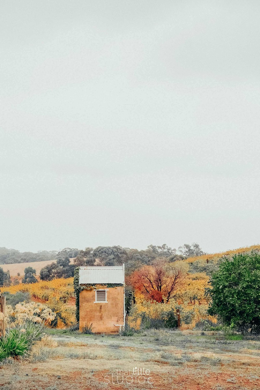 Barossa Adelaide, South Australia