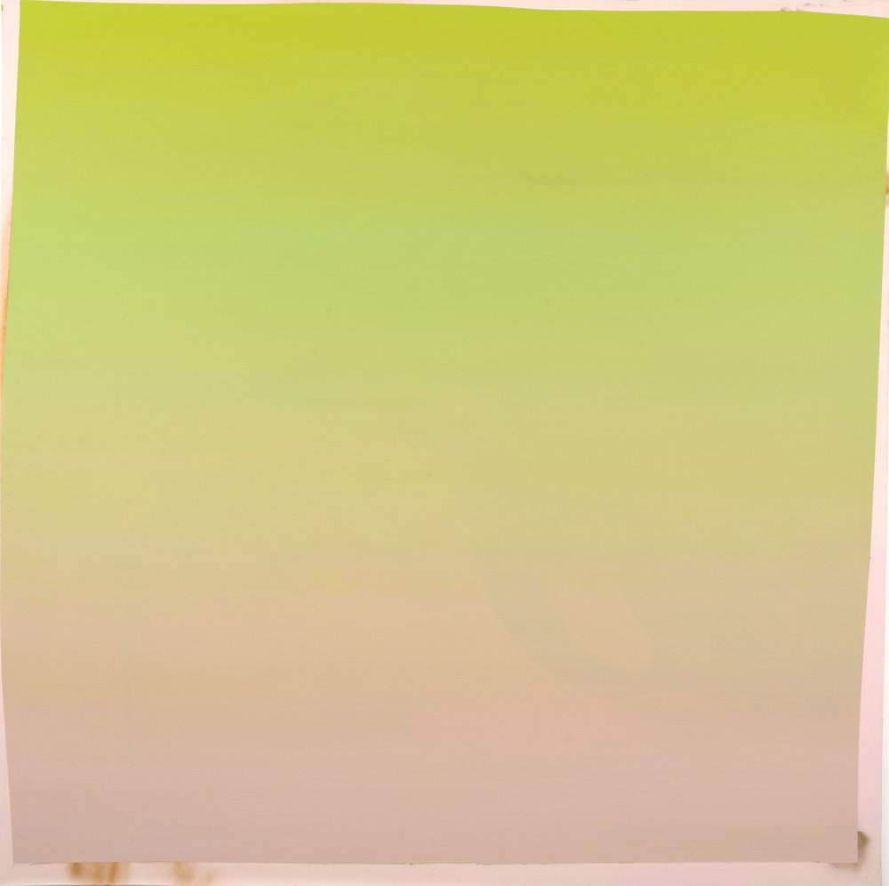 pinkgreen(cropped).jpg