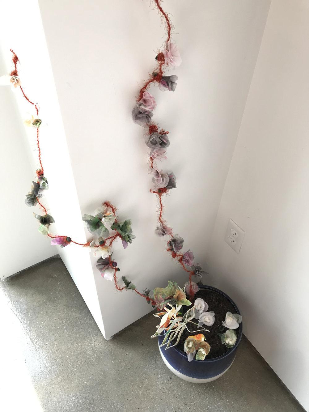 JeneeMateer.FlowersDays20-35.jpg