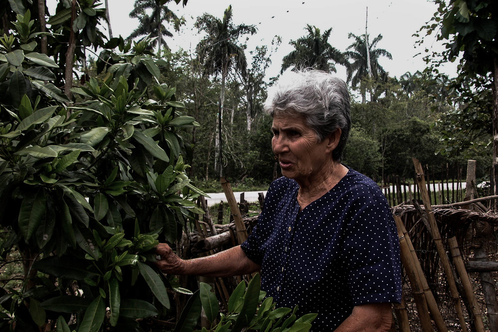 Juana_with garden shrub.jpg