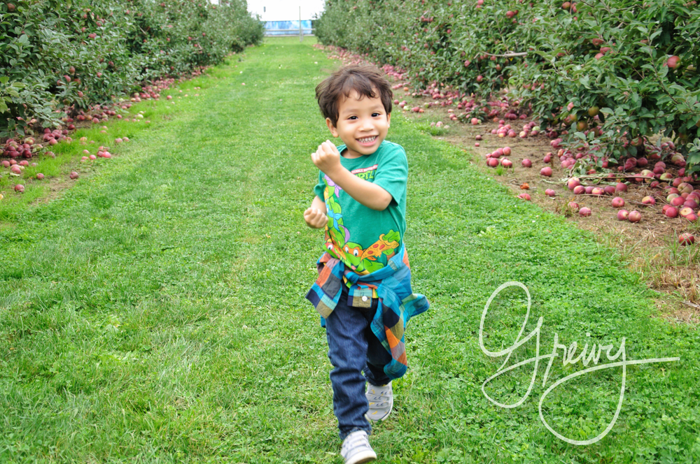 Greivy.com Hamptons Apple Picking - 6.png