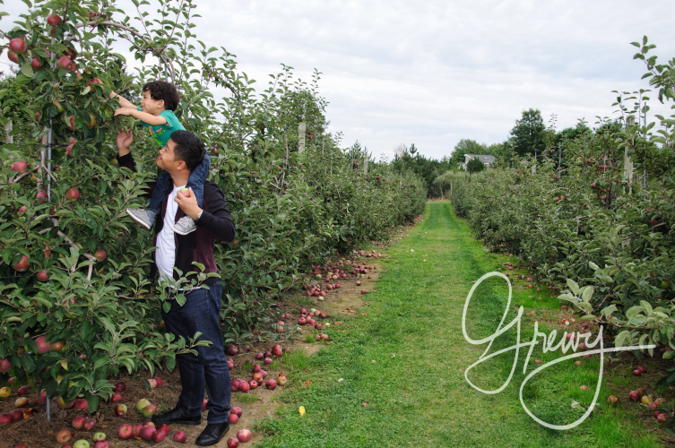 Greivy.com Hamptons Apple Picking - 24.png