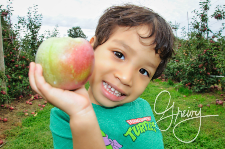 Greivy.com Hamptons Apple Picking - 32.png
