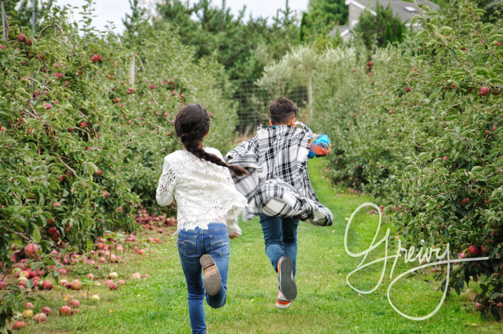 Greivy.com Hamptons Apple Picking - 33.png