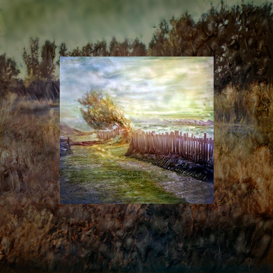 SqSpc  LandscapeSeries99X•FINAL.jpg