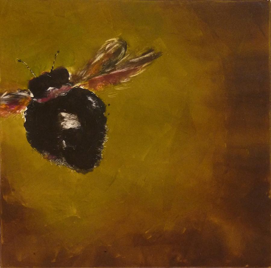 "Bee Hind, monotype, 12""x12"""