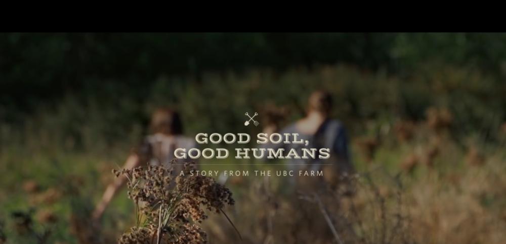 Video  | Corporate, narrative, advertising, non--profit