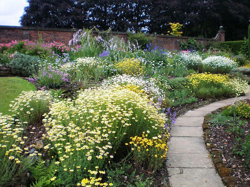 800px-Winterbourne_Botanic_Garden.JPG.jpeg
