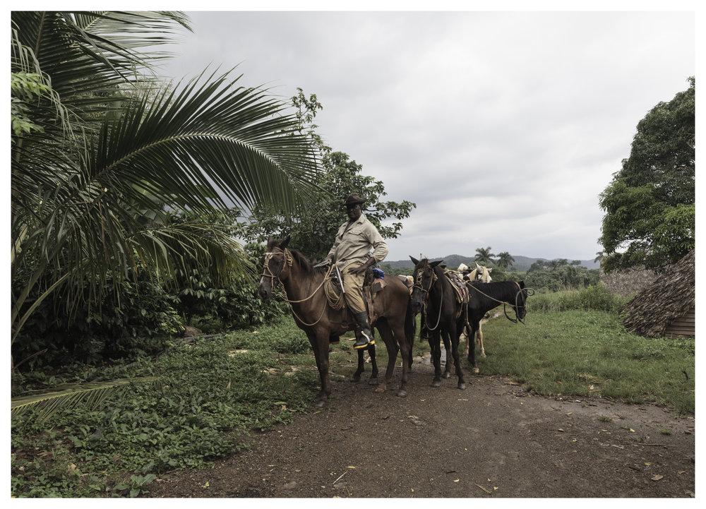 Ishmael, local farmer in Viñales, Cuba  1/100 f/8.0 ISO 250 at 24mm