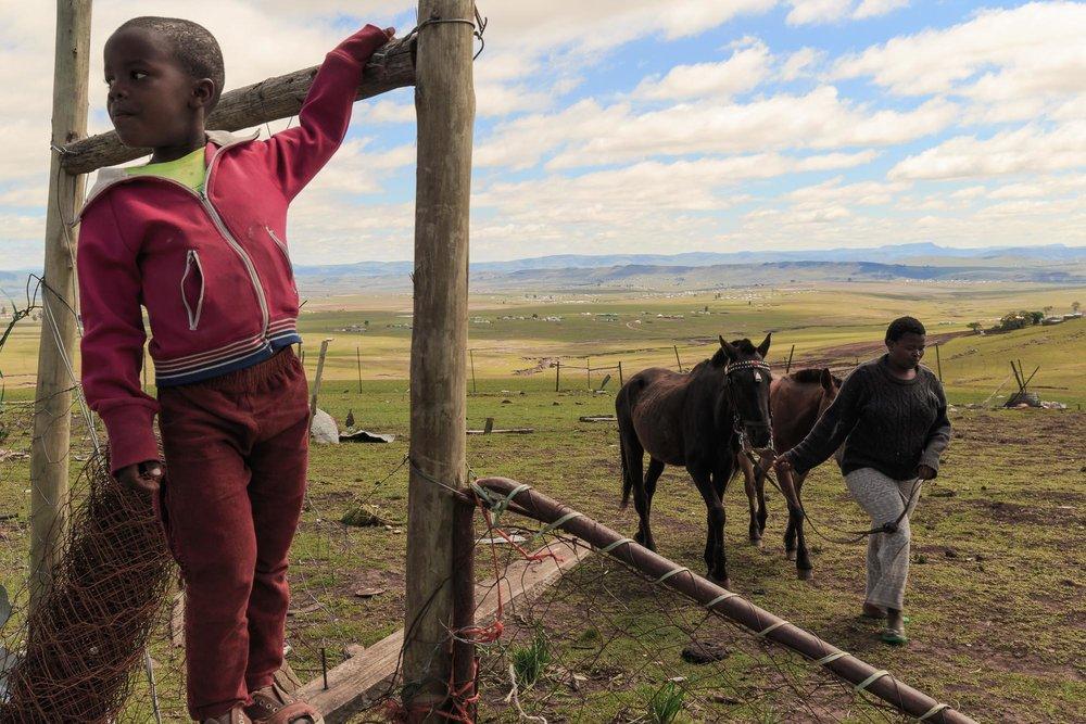African Cowboys-5.jpg