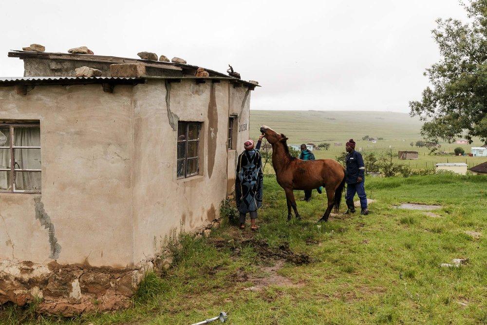 African Cowboys-6.jpg
