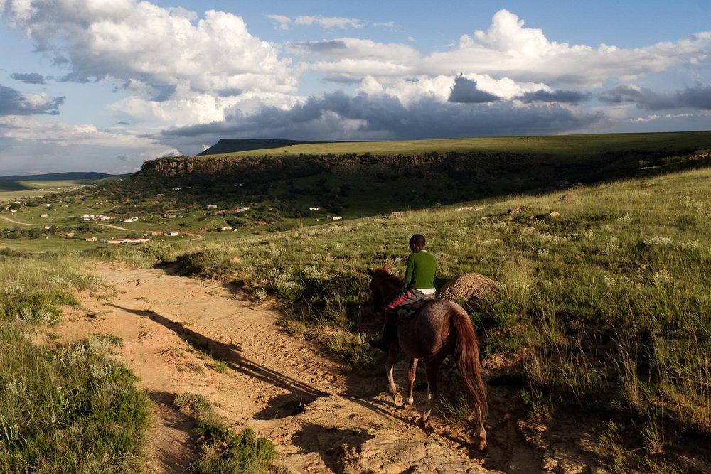 African Cowboys-25.jpg