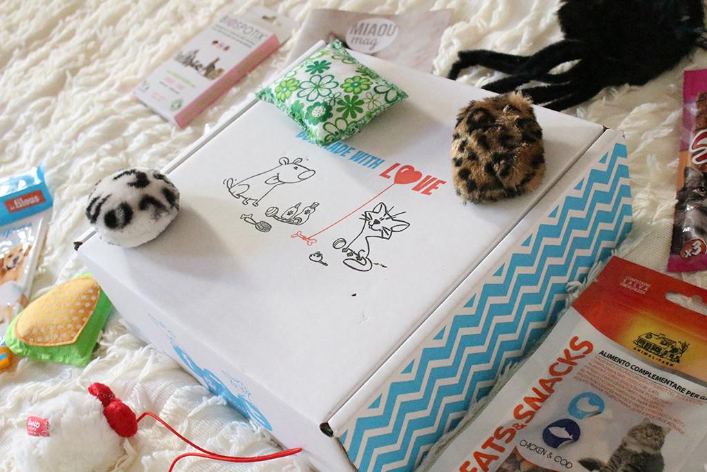 miaou-box-chat-blog-mode-bordeaux-3