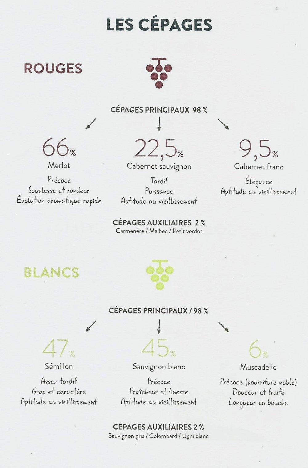 degustation vins & sophrologie.jpg