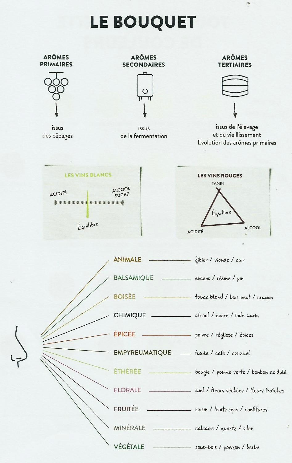 degustation vins & sophrologie-2.jpg