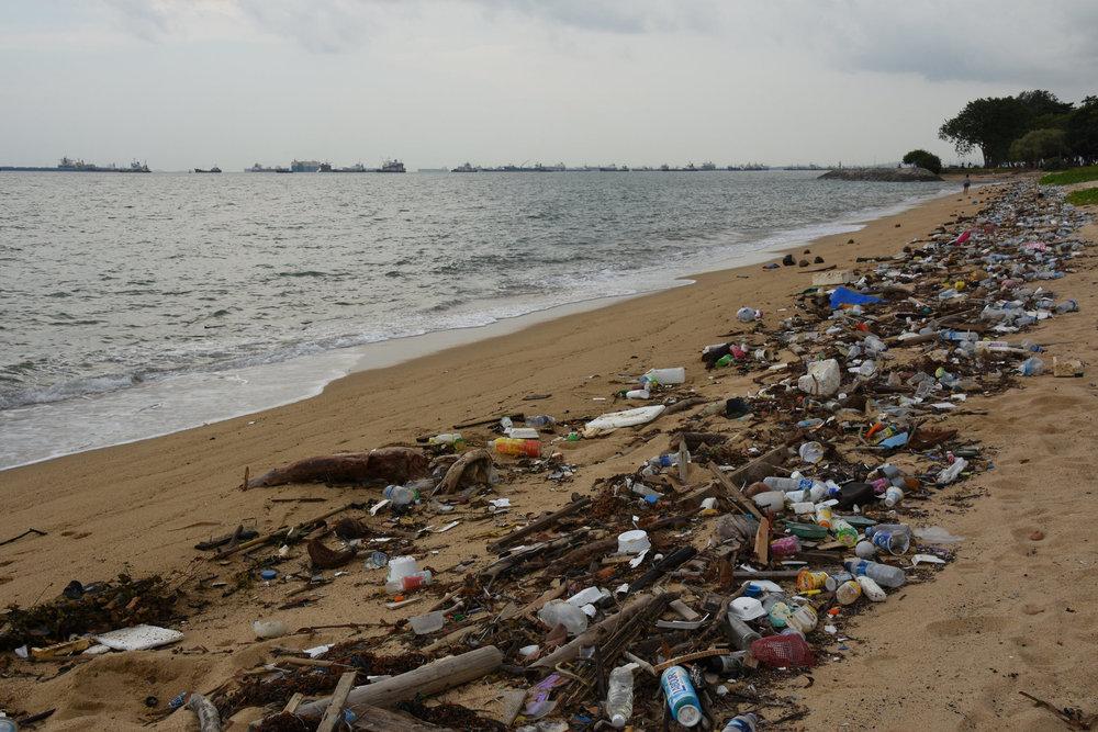 Litter on a Singapore beach | ©CC BY 2.0  vaidehi shah