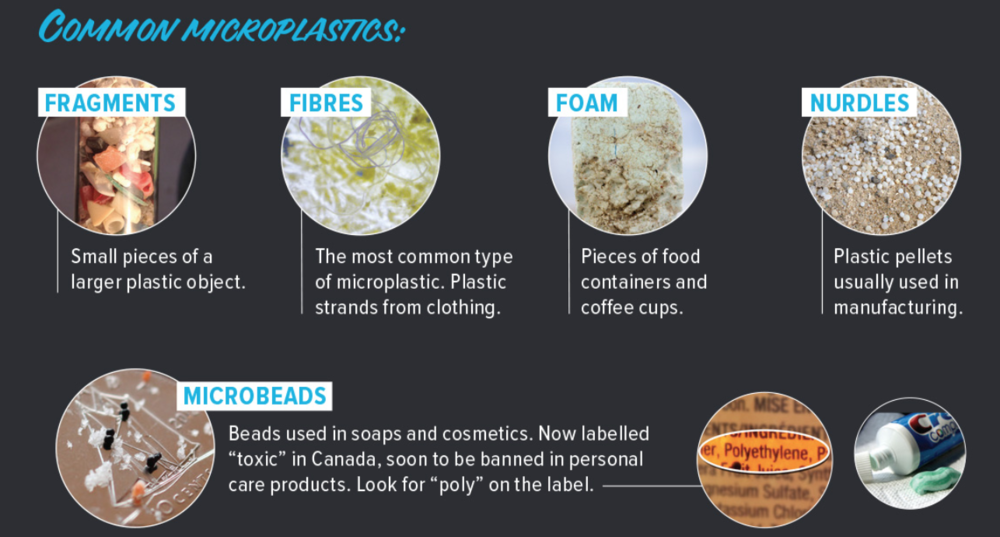 Sources of microplastic in the ocean | © Waterkeeper