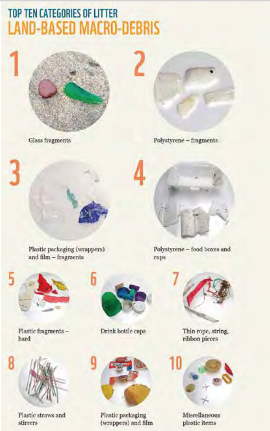 Top 10 Categories of Litter