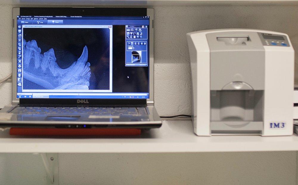 Tannrøntgen+skjerm_sarpsborg_smaadyrklinikk.jpg