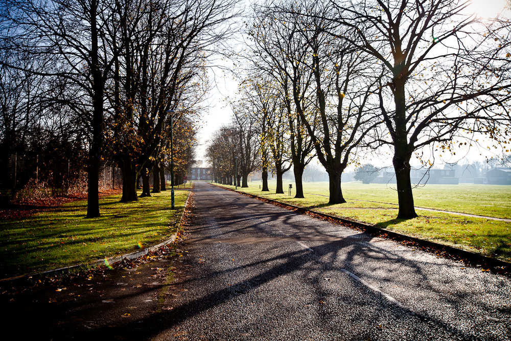 Tree lined avenue Oakington Barracks_Phase 2.jpg