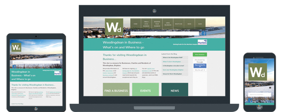 woodingdean-in-business-portfolio.jpg