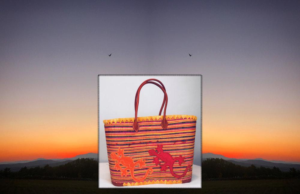 Carol S Miller Sun Bags 3-2-1825.jpg
