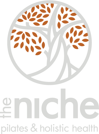 theNiche_banner_logo.png