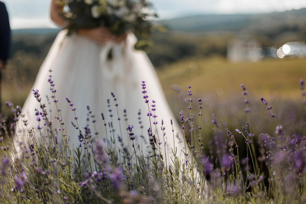 nicole-daacke-photography-intimate-wedding-in-a-lavender-field-washington-state-wedding-photographer-intimate-elopement-golden-lavender-field-wedding-photos-31.jpg