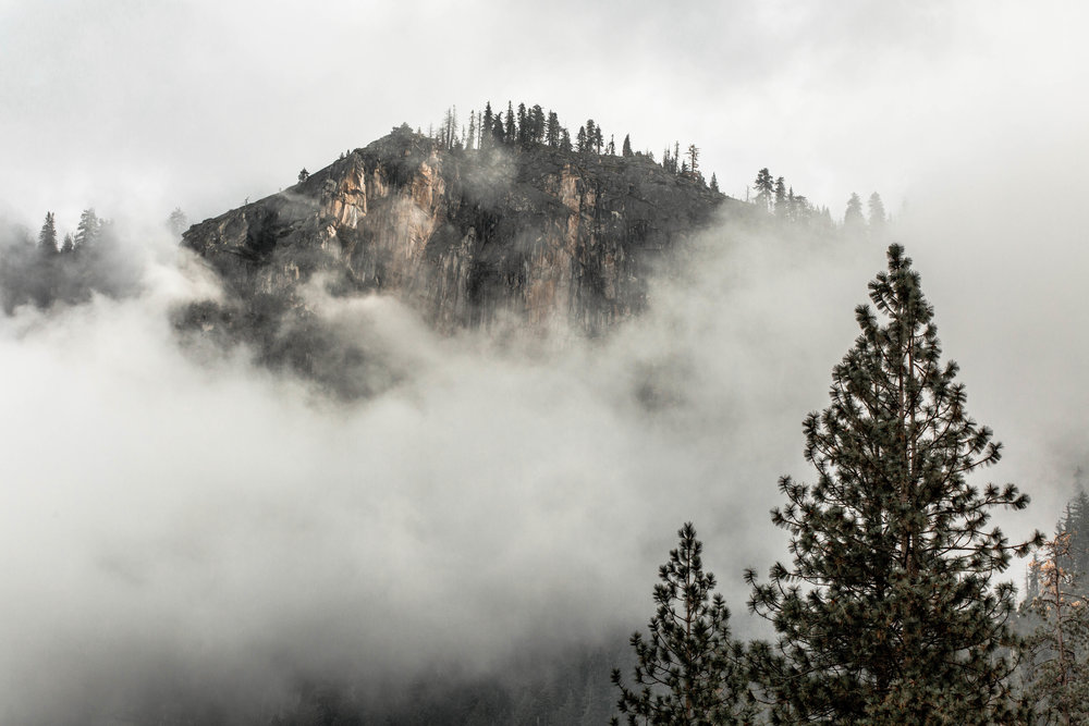 Nicole-Daacke-Photography-Vibrant-Landscape-National-Geographic-Yosemite-National-Park-California-Foggy-Photography-50 copy.jpg